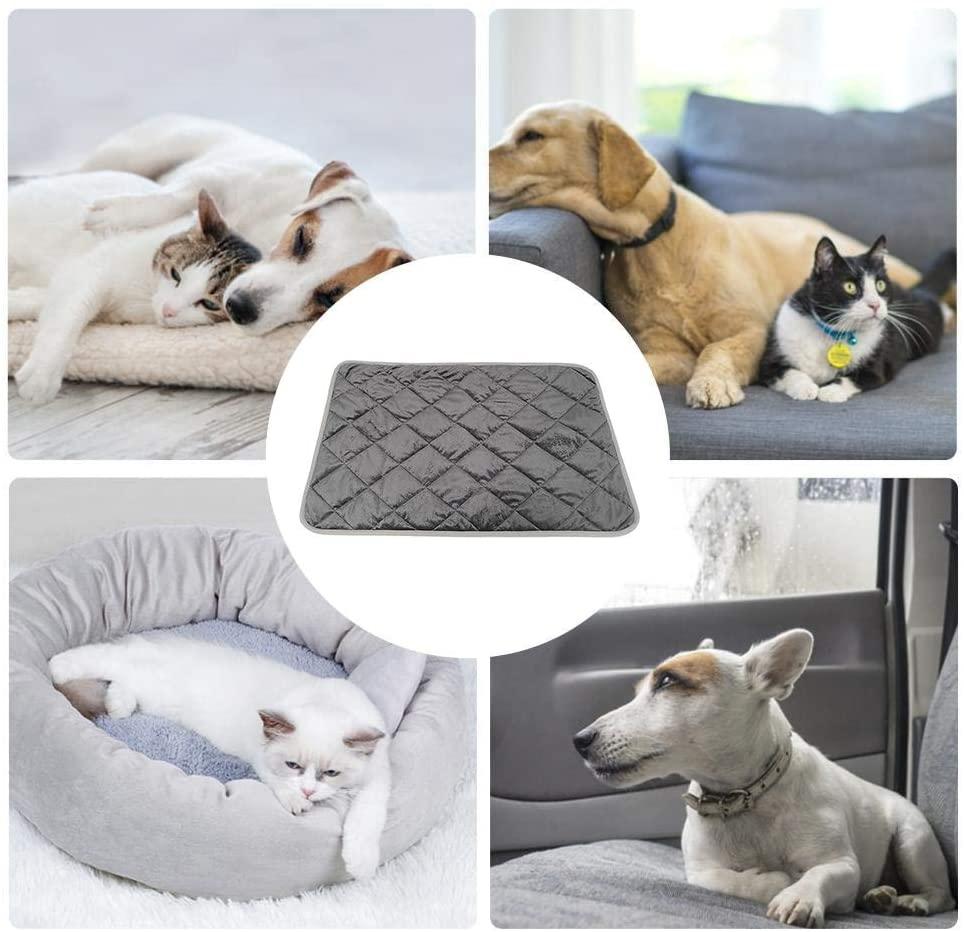 Guida: Migliori Letti, Cucce e Tappetini Riscaldanti per Cani