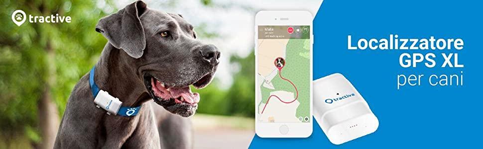 Guida: i migliori Collari localizzatori GPS per cani e gatti