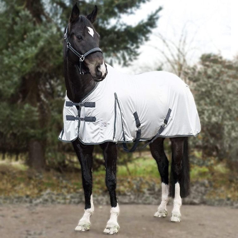 Le-migliori-coperte-anti-mosche-per-i-Cavalli Migliori Antiparassitari per Cani: migliori antipulci e zecche