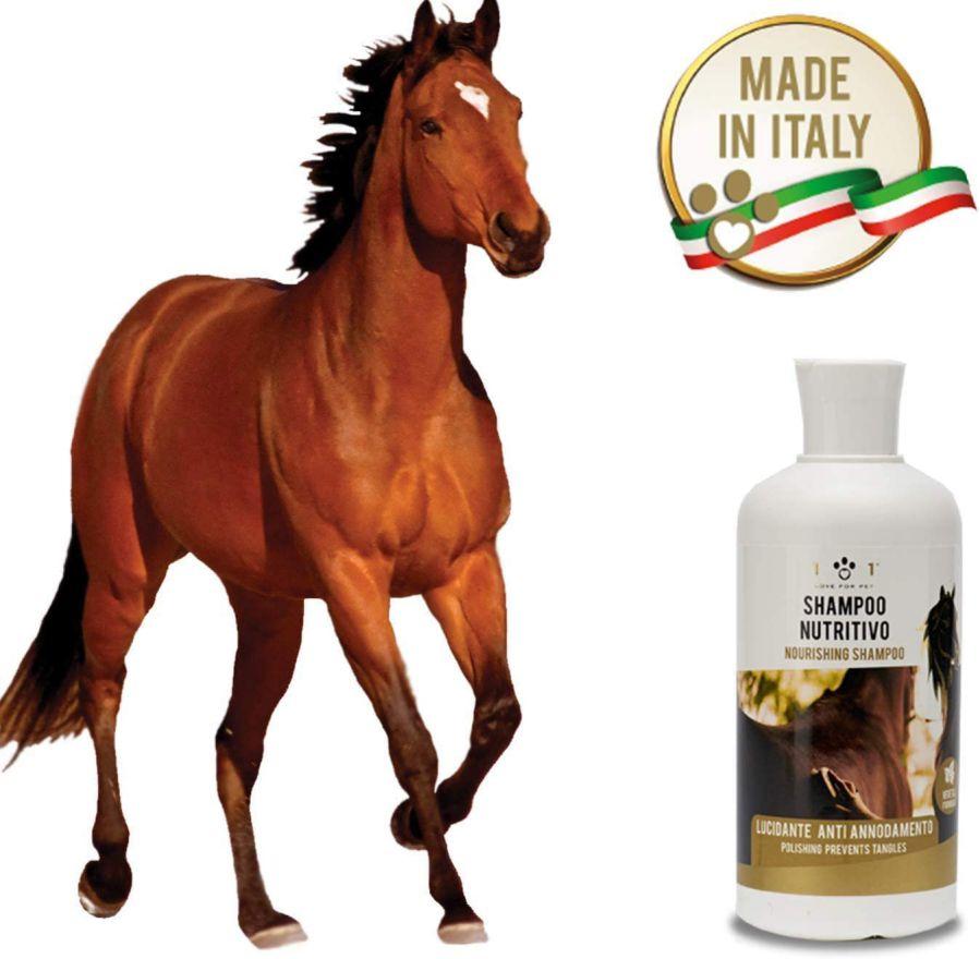 migliori-shampoo-per-Cavalli Migliori Antiparassitari per Cani: migliori antipulci e zecche