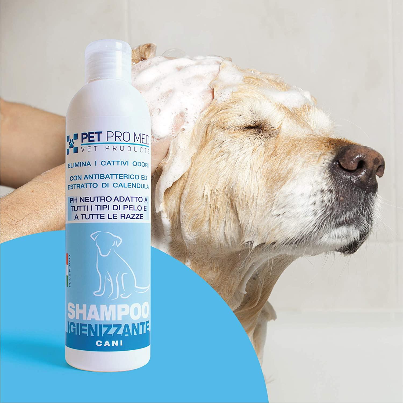 miglior-shampoo-per-cani Migliori Antiparassitari per Cani: migliori antipulci e zecche