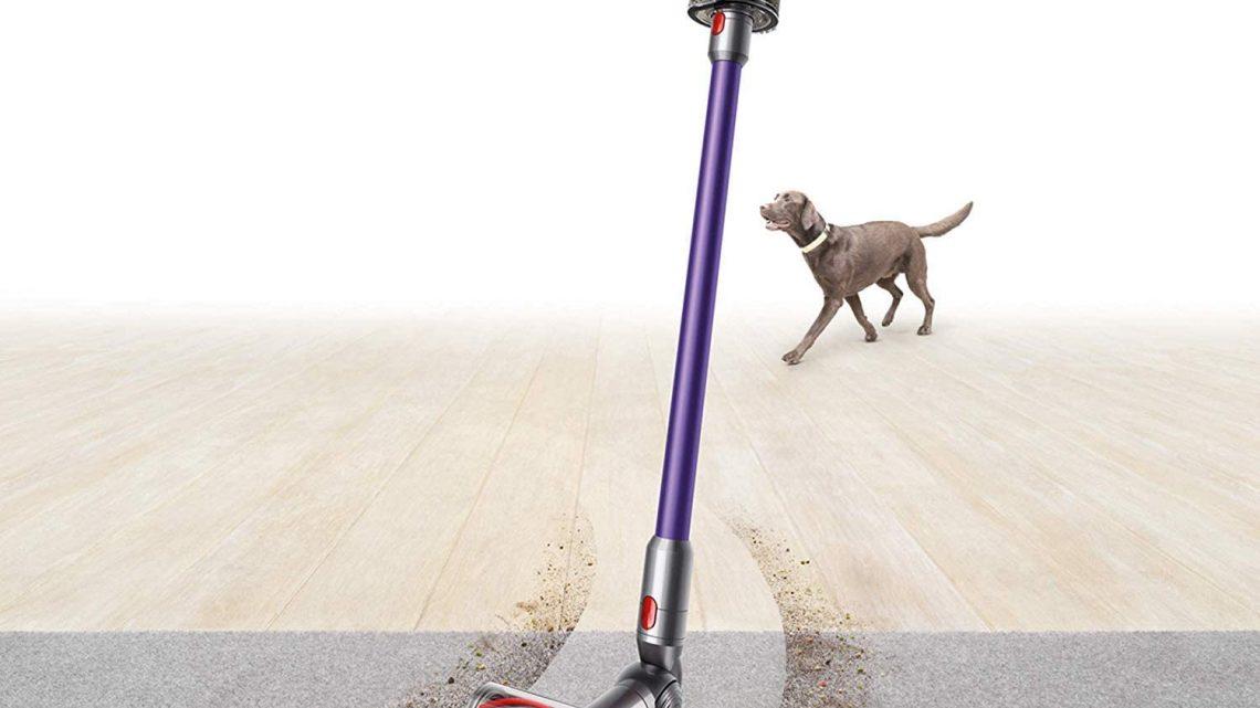 I migliori aspirapolvere per Peli Animali domestici: Aspirapolvere potenti per animali domestici